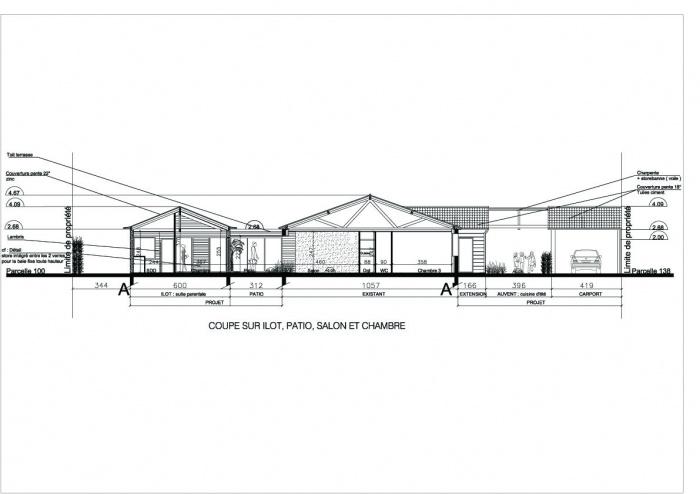 Extension d'une maison ( projet en cours ) : Coupe paysagère copie